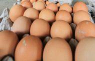 Satu Butir Telur per Hari Turunkan Risiko Penyakit Jantung